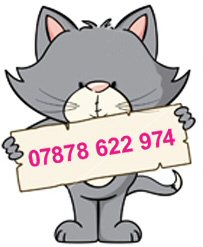 pet sitting contact Kirstie on 07878 622 974